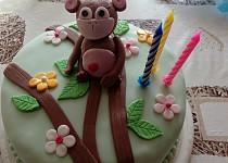Dort s opičkou na větvi