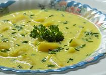 Polévka z kyšky