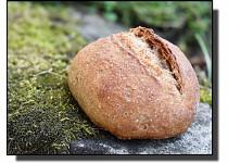 Žitno-pšeničné dalamánky