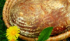 Semínkový chléb se sušenou syrovátkou