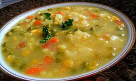 Barevná zeleninová polévka, zahuštěná hraškou