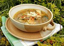 Loštická  polévka s tvarůžkovými celestýnskými nudlemi