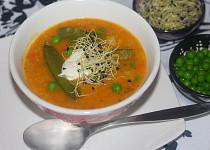 Zeleninová kari polévka