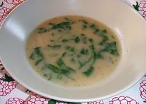 Chlebová polévka s medvědím česnekem