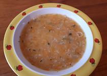 Mrkvovo-vločková polévka - pro nejmenší