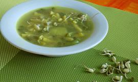 Fazolková polévka s klíčky mungo