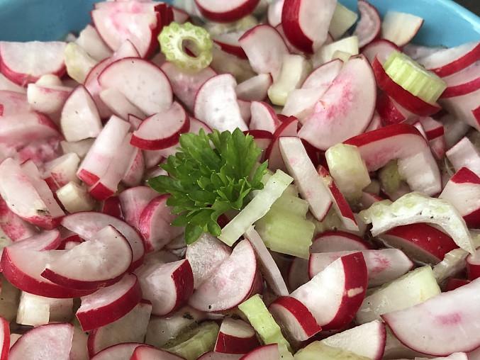 Ředkvičkový salát s řapíkatým celerem a octovou zálivkou