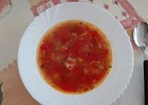 Polévka z rajčat s cuketovými nudlemi