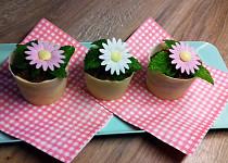 Čokoládové květináčky