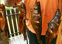 Uzený pstruh nebo makrela