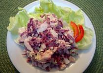 Salát ze dvou druhů zelí
