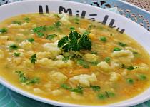 Rychlá halušková polévka