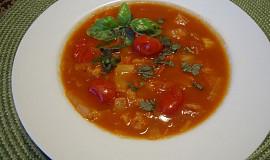 Polévka z pekingského zelí s rajčátky - aneb co dům dal