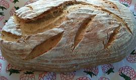Slunečnicový chléb se starým těstem