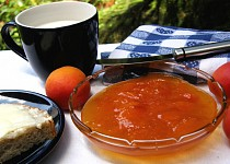 Meruňkový džem z DP