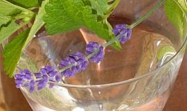 Sirup meduňkový, mátový, levandulový - podle mne