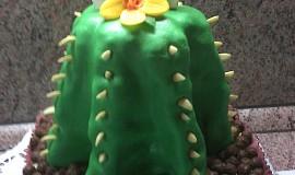 Dort kaktus