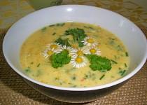Jarní mrkvová polévka s bylinkami