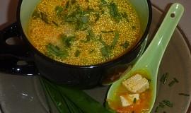 Drožďovo - mrkvová polévka s tofu