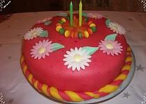 Můj první potahovaný dort