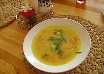 Nenáročná rychlá zeleninová polévka
