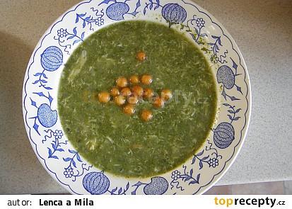 Špenátová polévka (rychlovka)