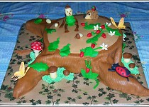 Pařez - dorty