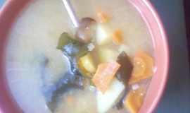Miso polévka II