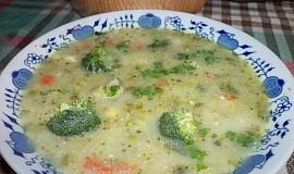 Barevná brokolda s krupičkou
