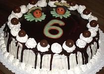 Vosí dort s čokoládovou polevou