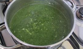 Špenátová polévka ŽLUČNÍKOVÁ