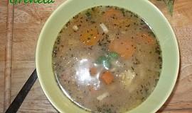 Zeleninová polévka s ovesnými vločkami
