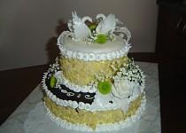 Moje dorty pečené s láskou pro rodinu
