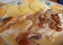 Pangacius s houbovou omáčkou, blanšírovaný salát