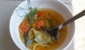 Zeleninová dietní polévka