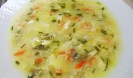 Jemná letní zeleninová polévka