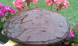 Kakaový koláč s pomerančovou šťávou