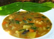 Bramborová  polévka s medvědím česnekem