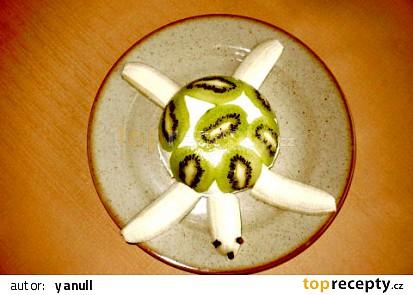 Želva jedlá