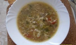 Pórkovo-žampionová polévka