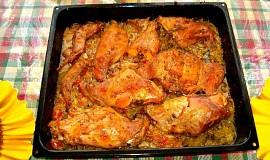 Králík  či kuře proti skleróze