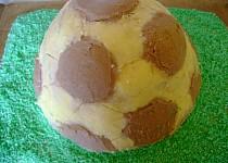 Dort fotbalový míč