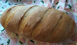 Bílý chléb se starým těstem - old dough, pâte fermentée