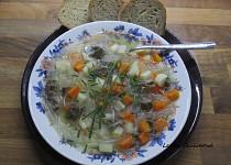 Nudlová polévka se zeleninou