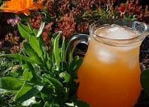 Meruňkový / broskvový sirup