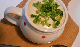Bleskurychlá sojanéza, neboli majonéza do dělenky (Dělená strava podle LK - kytičky)