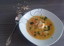 Polévka s ovesnými vločkami