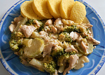 Kuřecí nudličky na česneku a smetaně s brokolicí + knedlík mléčný  (Dělená strava podle LK - zvířata
