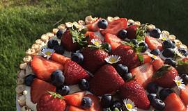Vanilkový dort s ovocem