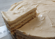 Rýchli koláč so salkom a sušienkami
